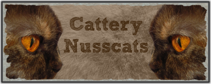 nusscats